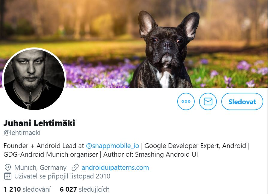 Instagram account photo of Luhani Lehtimäki, Android Developer at Snappmobile.iofeaturing his dog outside